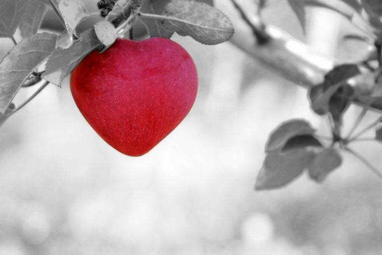 De ce ispitei devin mai puternice după ce o persoană îl acceptă pe Isus Hristos?
