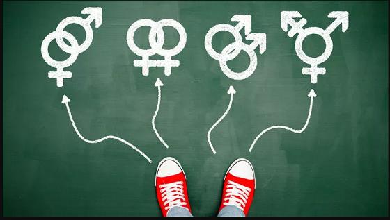 """Ideologia de gen nu propagă """"egalitatea sexelor"""" în fața legii, ci """"egalitatea sexuală""""…"""